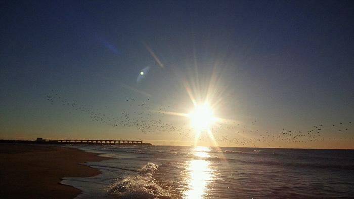 海の散歩は貸切り_c0120834_09145435.jpg