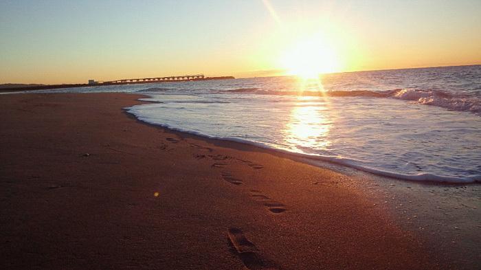 海の散歩は貸切り_c0120834_09145468.jpg