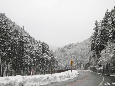 京都の山で雪遊び_b0177436_2172173.jpg