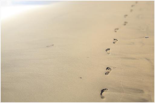 Footprints(足跡)_d0101050_1752319.jpg
