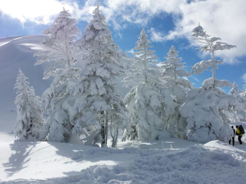 連休最終日の雪具合_e0155231_23312245.jpg