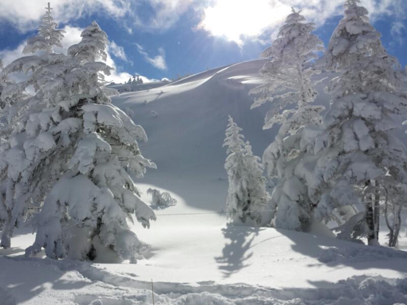 連休最終日の雪具合_e0155231_2331279.jpg