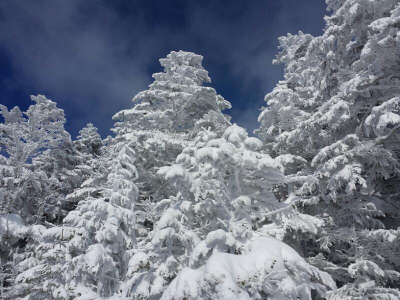 連休最終日の雪具合_e0155231_2332537.jpg