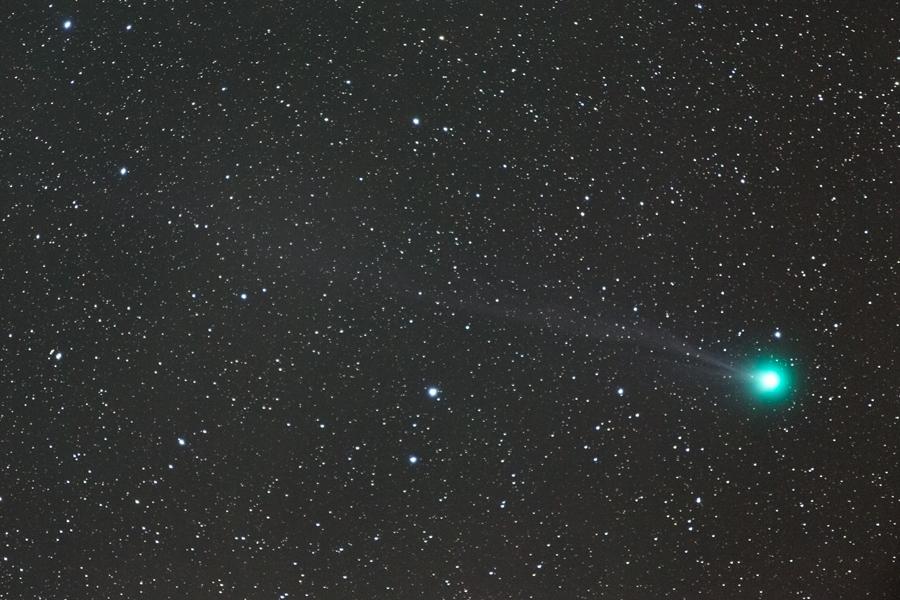 ラブジョイ彗星が見頃です_a0087133_029263.jpg