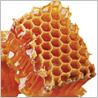 ニールズヤードレメディーズの春のおすすめ商品です。_c0227633_16444056.jpg