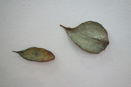 散りゆく葉の見た夢は…_a0017350_00081877.jpg