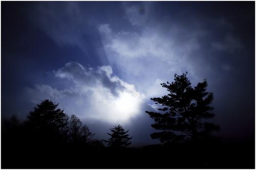 Sunlight of winter(冬の日差し)_d0101050_12363067.jpg