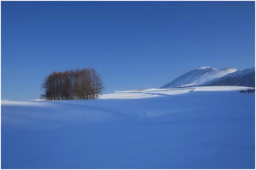 Mt.ASAMA(浅間山)_d0101050_167088.jpg
