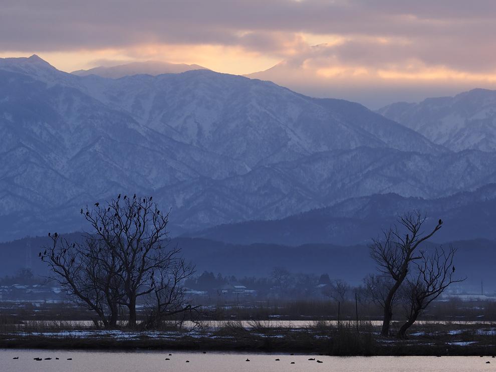 福島潟の夜明_e0214470_20572395.jpg