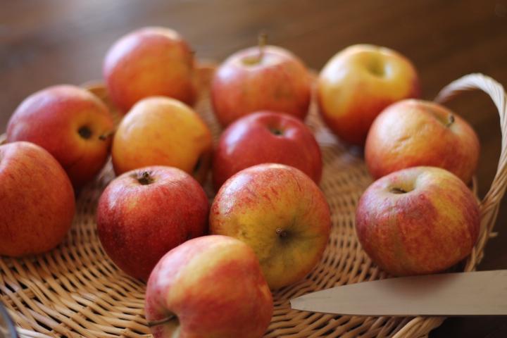 tarte aux pommes タルトオポンム/ アップルパイ_f0136579_3325839.jpg
