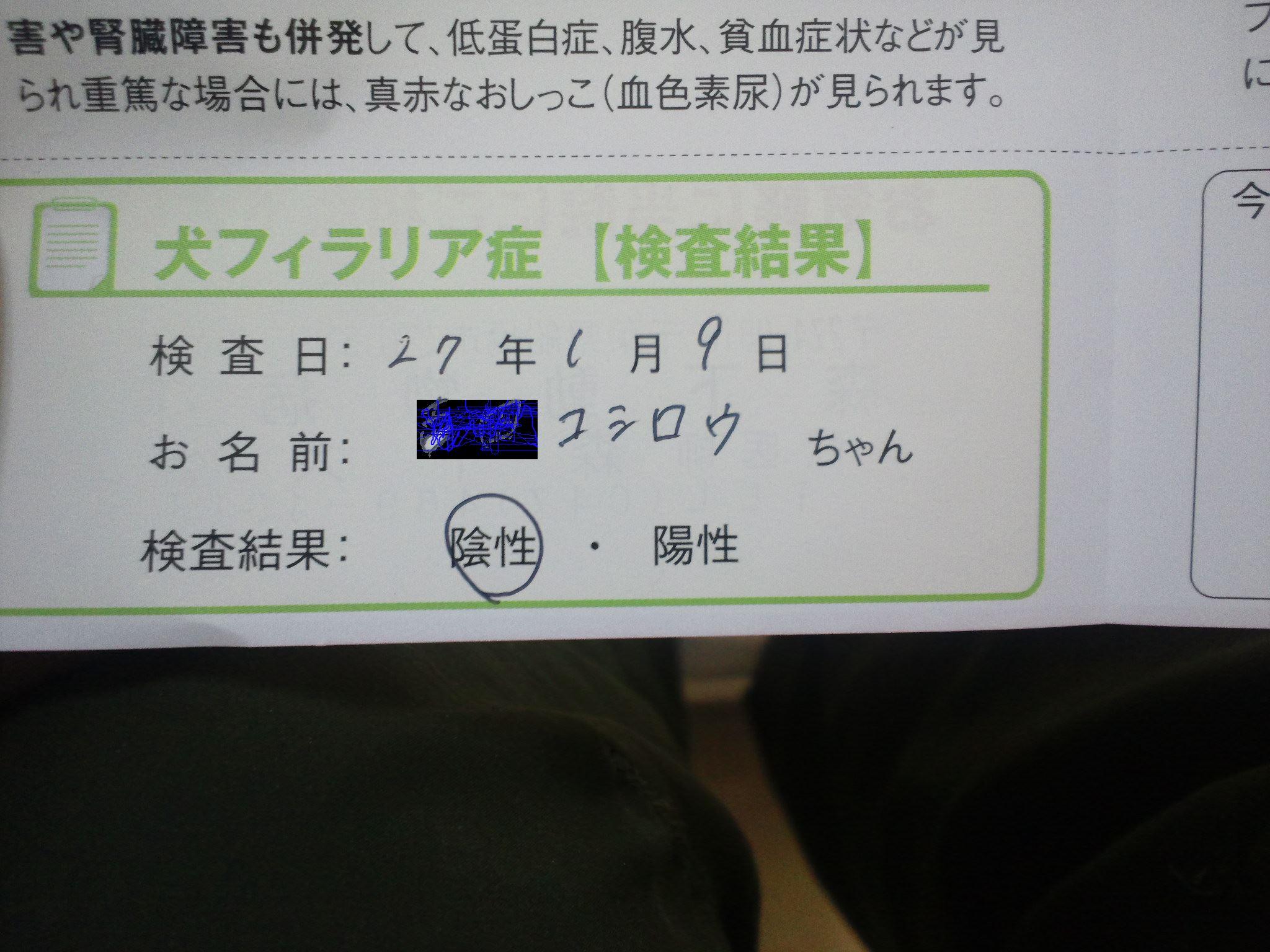 f0242002_185456.jpg