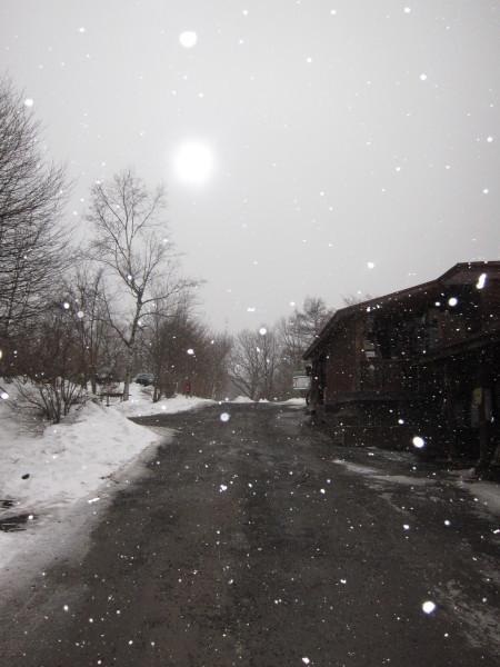 冬来りなば雪は降る_b0174425_17360816.jpg