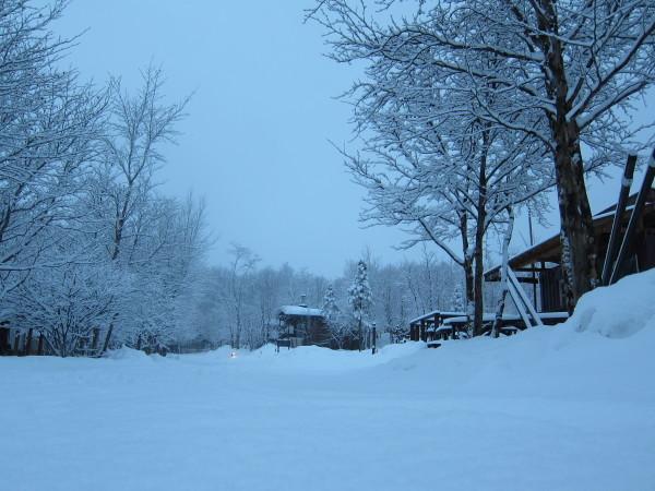冬来りなば雪は降る_b0174425_17365386.jpg