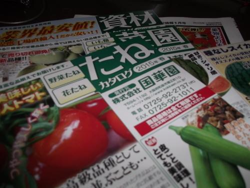 雨の日は..夏野菜の種選び!_b0137932_11581240.jpg