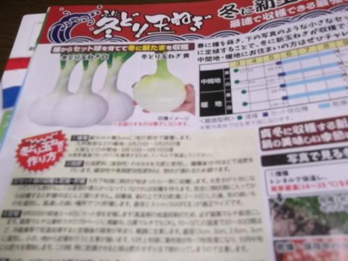 雨の日は..夏野菜の種選び!_b0137932_11583286.jpg