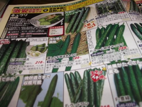 雨の日は..夏野菜の種選び!_b0137932_11584713.jpg