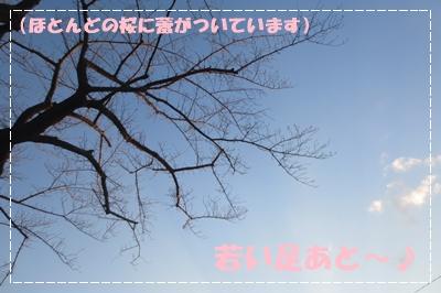 b0254145_22395464.jpg
