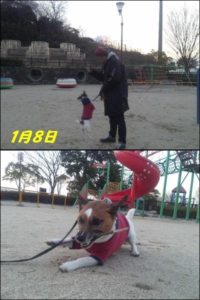f0100871_12333231.jpg