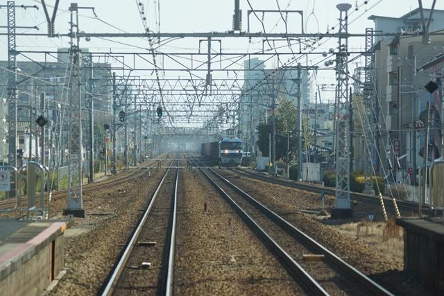 激写!!貨物列車「桃太郎」の写真_d0181492_12502794.jpg