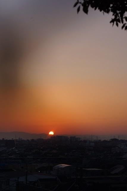 絶景かな!!朝日に向かって走る新幹線_d0181492_1257279.jpg