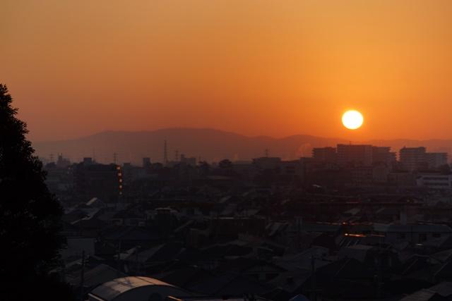 絶景かな!!朝日に向かって走る新幹線_d0181492_12575858.jpg
