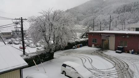 本日、雪です。_c0193896_14222305.jpg
