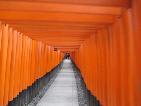 年始の京都_b0209507_1053191.jpg