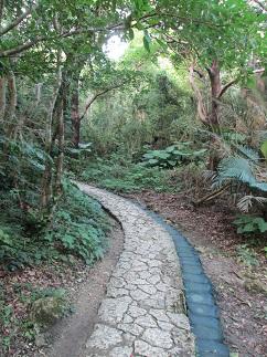 沖縄への旅(その14)_c0034228_21292769.jpg