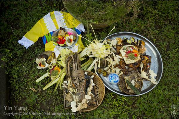 人生初の儀式、バリ島_e0139738_10383017.jpg