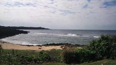 1月16日浜めぐり_b0158746_1732117.jpg