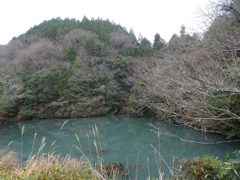 春蘭の道作りが順調に進んでいます  in  孝子の森     by     (TATE-misaki)_c0108460_20041711.jpg