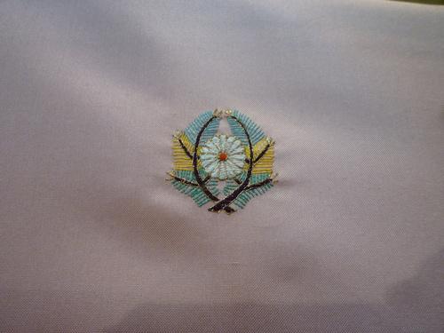 白山紬振り袖 五つ加賀紋   <真美弥別製>_d0159384_16233068.jpg