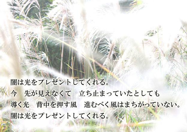 a0329820_10095916.jpg