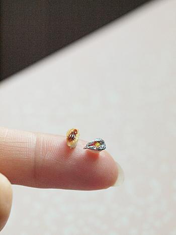 miniature* お寿司_e0172847_09060322.jpg