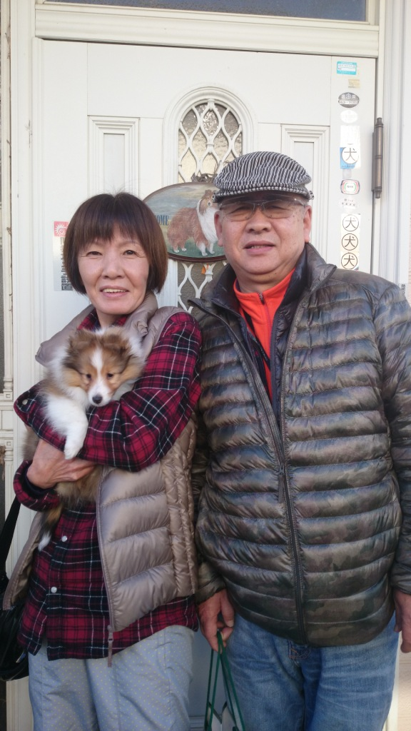子犬のお迎え_a0139367_12271142.jpg