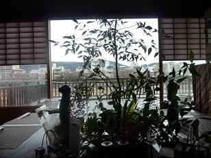 京都でタイ料理_a0177314_9544927.jpg