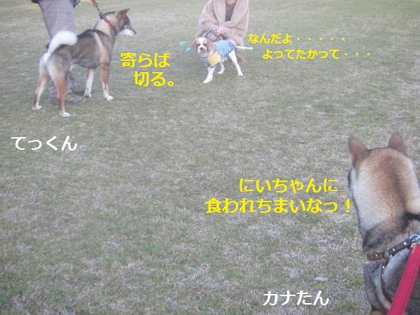 f0143123_1956396.jpg