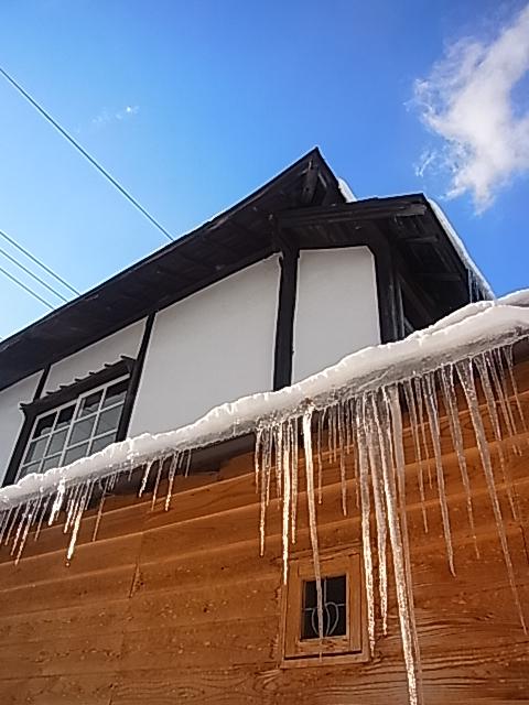 雪なのに、、、。_b0207642_13394043.jpg