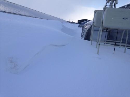 骨董品除雪機、壊れたあぁぁ〜_c0335145_15000526.jpg