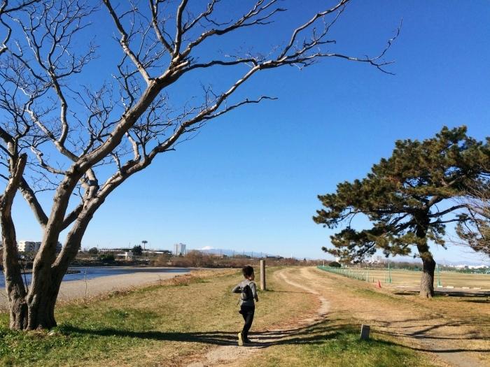 Sunday Morning Run & Beer (多摩川左岸トレイル & 鎌倉トレイル & 三浦アルプス)_b0219778_22122976.jpg