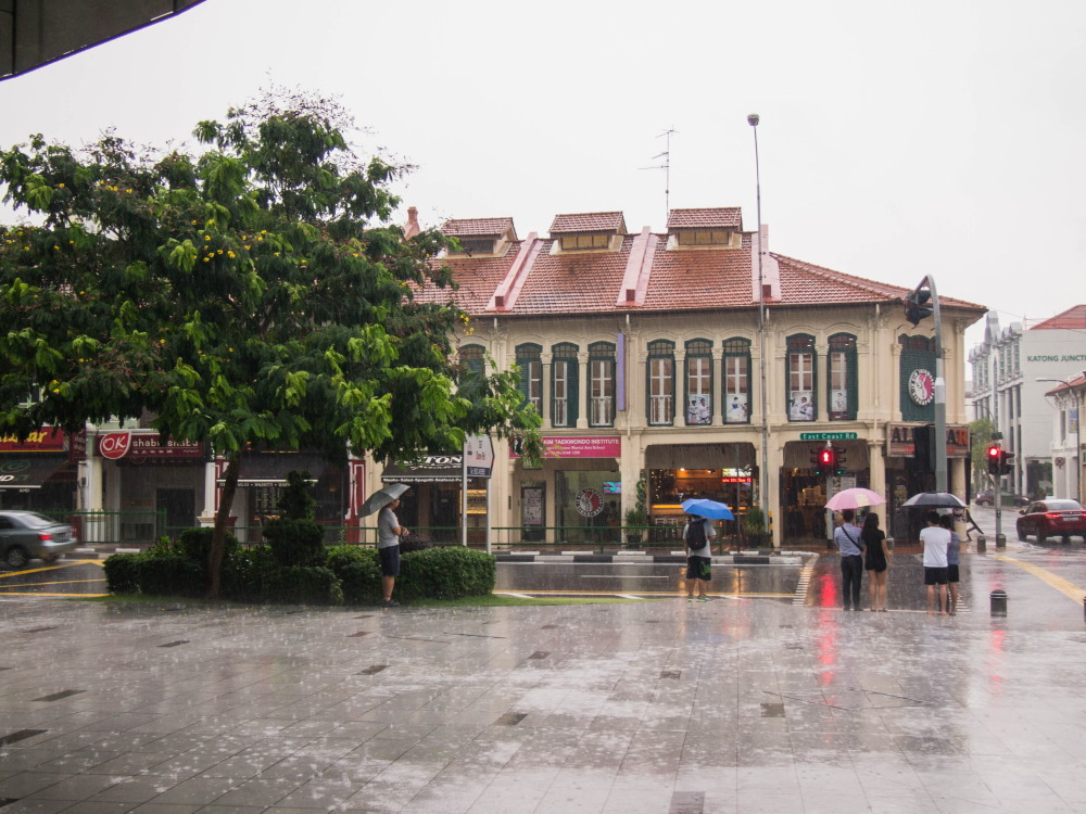 2014ジャワ島バリ島シンガポールvol.13~バリからシンガポール航空で~_f0276498_21572145.jpg