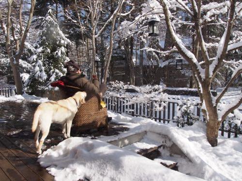 新雪を満喫した週末でしたぁ〜。_e0192217_9263677.jpg