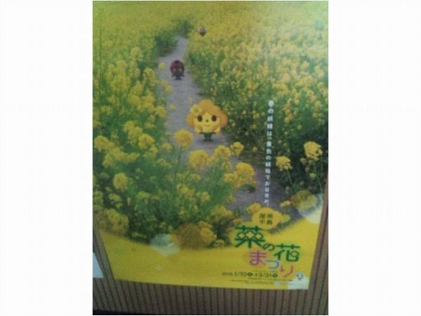 菜の花まつり_b0151724_09111973.jpg
