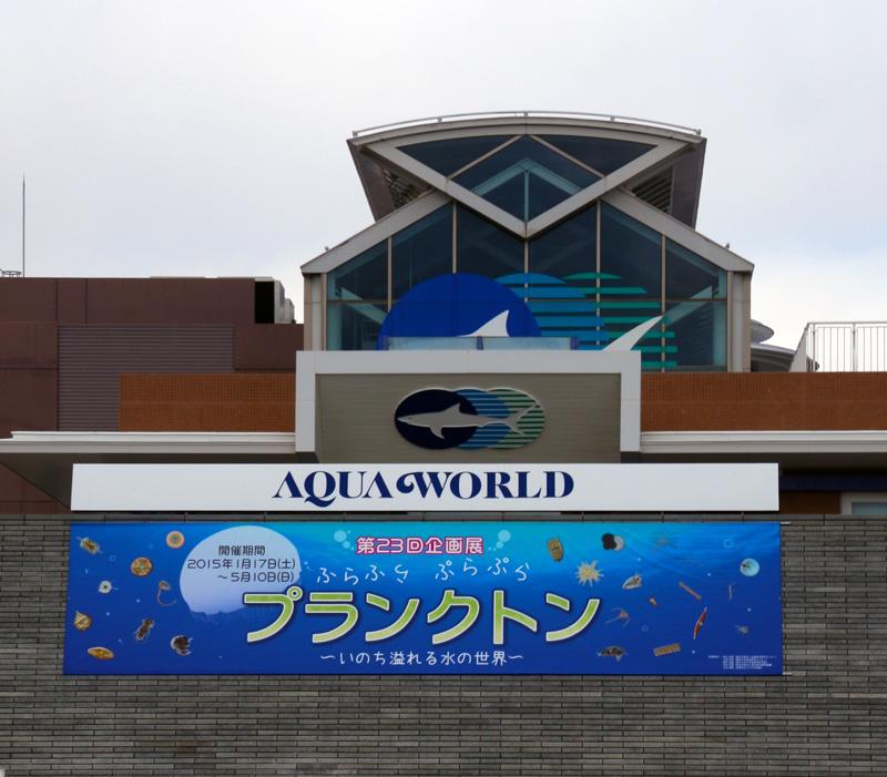 プランクトン展示見学_a0148134_154536.jpg