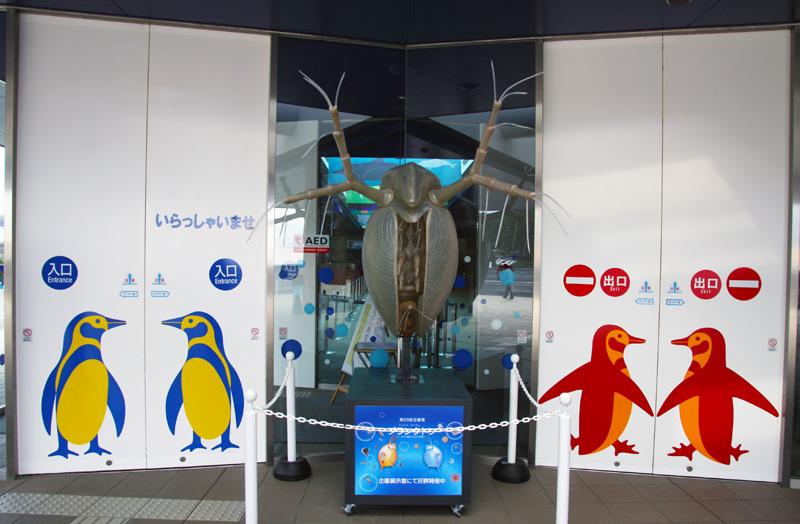プランクトン展示見学_a0148134_15494668.jpg