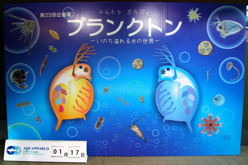 プランクトン展示見学_a0148134_15573946.jpg