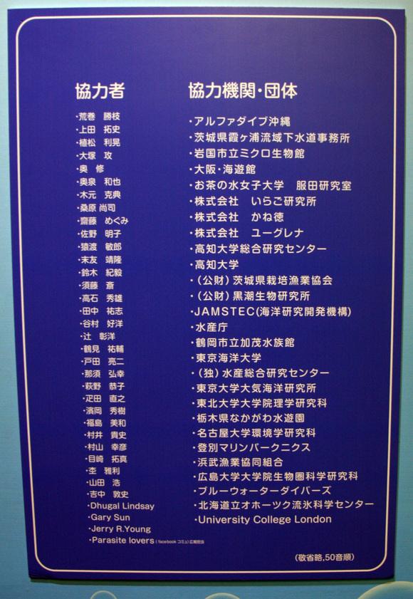 プランクトン展示見学_a0148134_1619342.jpg
