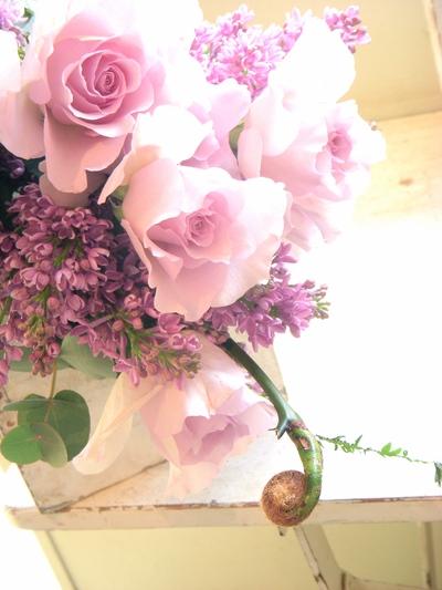 """バラ""""フォルム""""。。。_a0229658_14315215.jpg"""