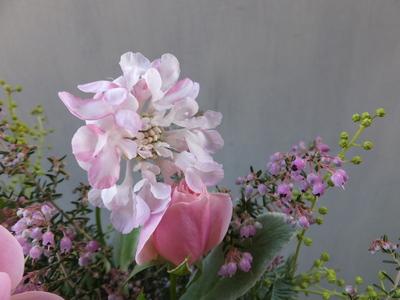 オークリーフ(バラとスカビオサのアレンジメント)_f0049672_14374540.jpg