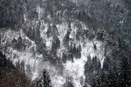 安曇川源流 雪景色_e0048413_2123265.jpg